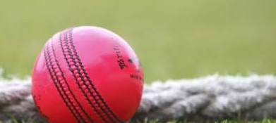 Date set for T20 Cup Tie v Chertsey