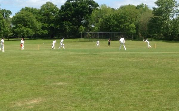 SDCC v Badgers 17 05 2015