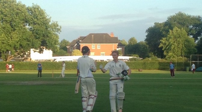 Young Stokers Headline T20 win at East Molesey