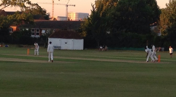 Excellent T20 Evening at Sutton