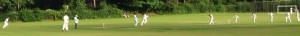 1st XI v Haslemere 2016 Tarrant Wicket Cropped