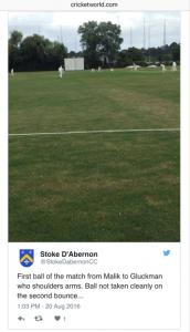 Dan Gluckman Cricket World