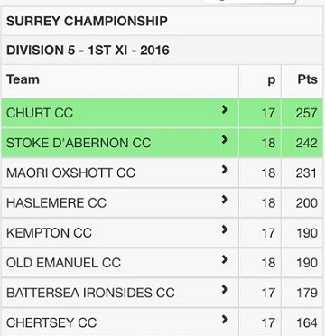 2016-division-5-1st-xi-table