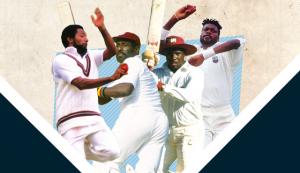 Cricketing Knights