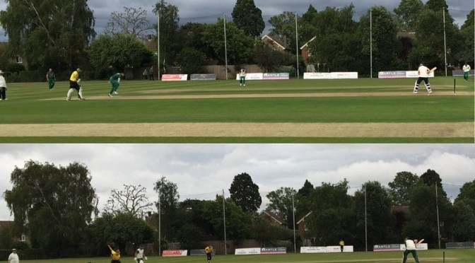 T20 Cup Defeat at Sunbury