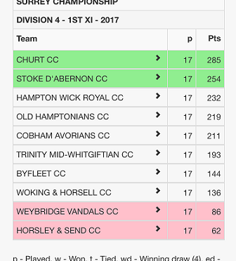 1st XI Promoted!