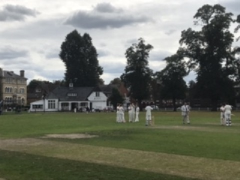 Amy Page Half-Century but Stoke Molesey Ladies lose at Twickenham