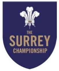 Best Ever Stoke Bowlers in the Surrey Championship?