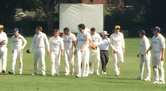 Great win for the 1st XI at Churt