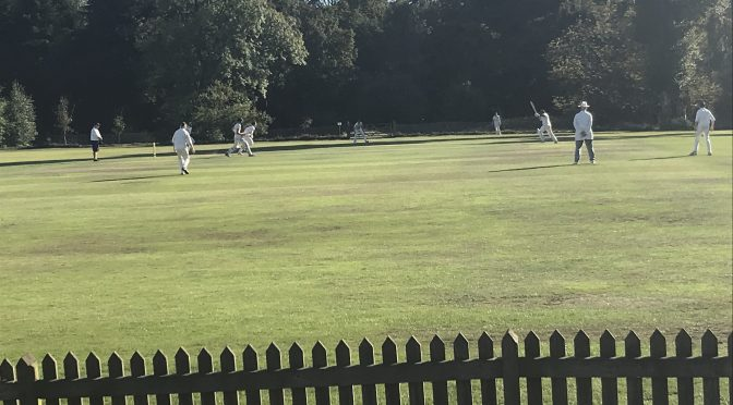 Great effort by the Sunday XI at Chipstead